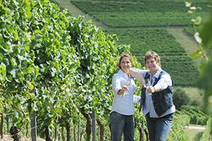 Weinanbau – und ausbau
